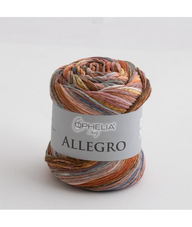 Allegro 003