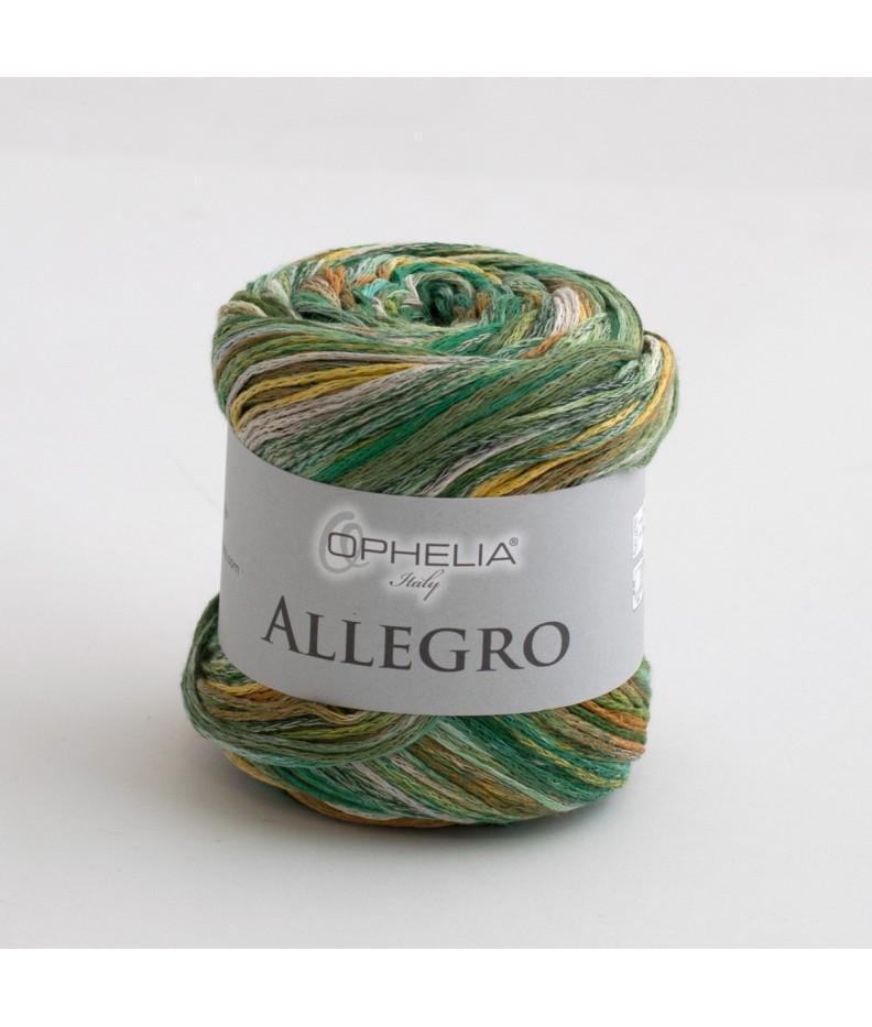 Allegro 004