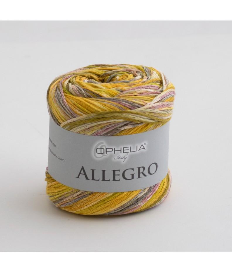 Allegro 005