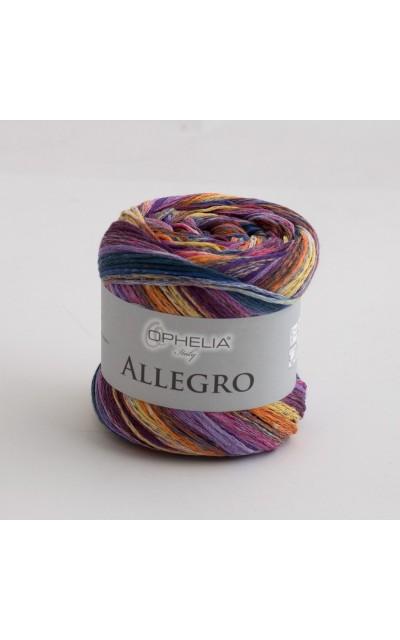 Allegro 006
